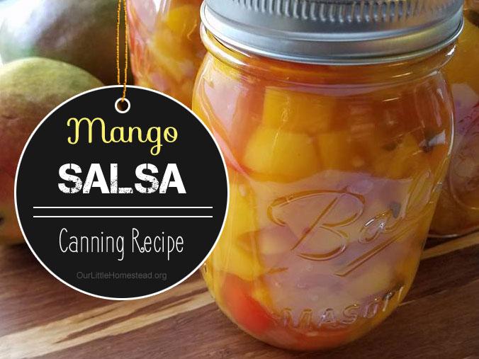 Mango Salsa – No Tomatoes