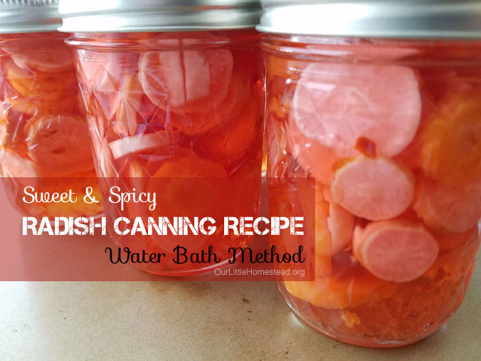 Water Bath Radish Recipe
