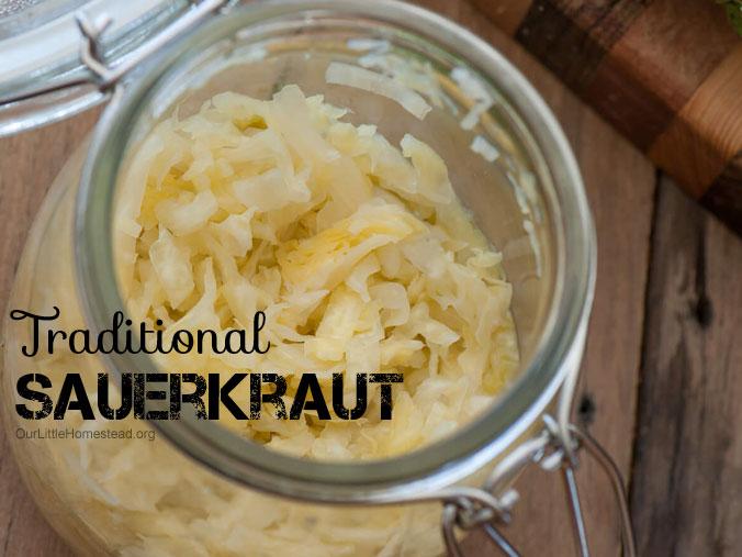 Sauerkraut Fermenting Recipe