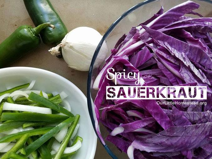 Spicy Fermented Sauerkraut