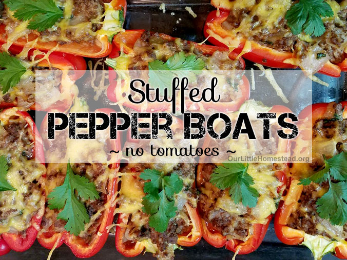 Stuffed Bell Pepper Recipe Without Tomatoes